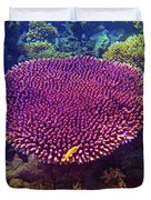 Barrier Reef Coral II Duvet Cover