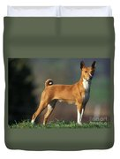 Basenji Dog Duvet Cover