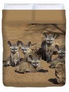 Bat-eared Fox Pups Duvet Cover