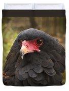 Bateleur Eagle Zimbabwe Duvet Cover