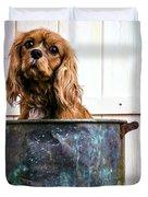 Bath Time - King Charles Spaniel Duvet Cover