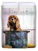 Bath Time - King Charles Spaniel Duvet Cover by Edward Fielding