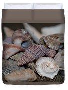 Beach Shells 3 Duvet Cover