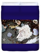 Beach Wares - Shells - Feather Duvet Cover