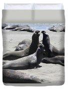 Beachmasters - Elephant Seals Duvet Cover