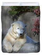 Bear 3789 Duvet Cover