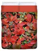 Bearberry In Autumn Yukon Canada Duvet Cover