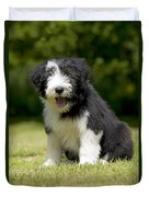 Bearded Collie Puppy Duvet Cover