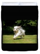 Bearded Collie Running Duvet Cover