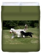 Bearded Collies Playing Duvet Cover by John Daniels