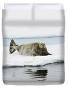 Bearded Seal On Ice Floe Norway Duvet Cover