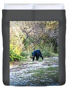 Bearly Stroll Duvet Cover