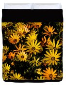 Beautiful African Daisies Duvet Cover