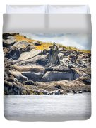 Seals And Rock Scupltures Duvet Cover