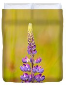 Beautiful Blooming Lupine Flower In Warm Sunlight Duvet Cover