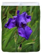 Beautiful Purple Iris Flower Art Duvet Cover