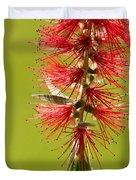 Beautiful Bottle Brush Flower Duvet Cover