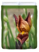 Beautiful Brown Bearded Iris Duvet Cover