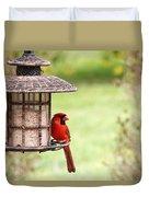 Beautiful Cardinal Duvet Cover