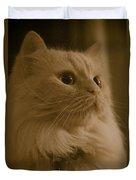 Beautiful Creamy Persian Cat Mix Portrait Duvet Cover