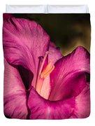 Beautiful Gladiolus Duvet Cover