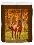Beautiful Horse In The Autumn Aspen Colors Duvet Cover by James BO  Insogna