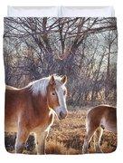 Beautiful Horses Duvet Cover