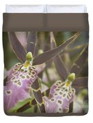 Beautiful Mtssa. Shelob 'tolkien' - Orchids - Mericlone  Duvet Cover by Sharon Mau