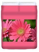 Beautiful Pink Gerber Daisies Duvet Cover