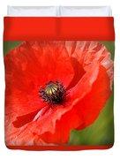 Beautiful Poppies 6 Duvet Cover