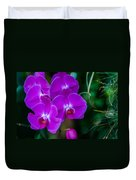 Beautiful Purple Orchid - Phalaenopsis Duvet Cover