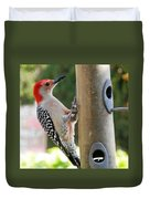 Beautiful Red Belly Woodpecker Jr Duvet Cover