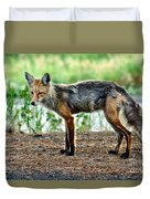 Beautiful Red Fox Duvet Cover