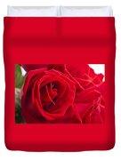 Beautiful Red Rose Close Up Shoot Duvet Cover
