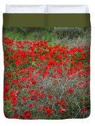 Beautiful Red Wild Anemone Flowers In A Spring Field Duvet Cover
