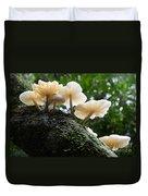 Beauty Of Mushrooms Argentina Duvet Cover