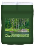 Beaver Dam In Heron Pond In Grand Teton National Park-wyoming Duvet Cover