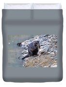 Beaver Sharpens Stick Duvet Cover