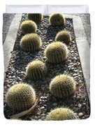 Bed Of Barrel Cacti  Duvet Cover