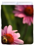 Bee On Coneflower Duvet Cover