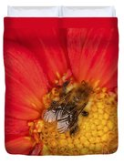 Bee On Dahlia - 2 Duvet Cover