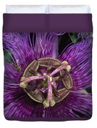 Bee On Passion Flower Brazil Duvet Cover by Pete Oxford