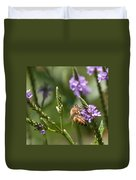 Bee On Purple Loosestrife  Duvet Cover