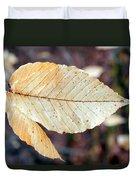 Beech Leaf In Winter Duvet Cover