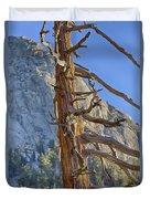 Beetle Barren Pine Duvet Cover
