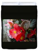 Begonia 20140706-1 Duvet Cover