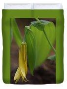 Bellwort Or Uvularia Grandiflora Duvet Cover