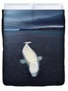 Beluga Whale Stranded At Low Tide Duvet Cover