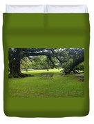 Bench At Oak Alley Plantation Duvet Cover