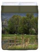 Benson Pond Duvet Cover